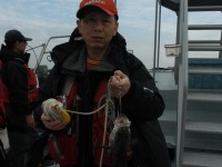 <p>東大阪市の高岡様、沖の北で、ハネ ウキ釣り 餌シラサエビ</p>