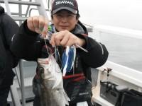 <p>泉大津市の鳩山様、旧一文字赤灯で、ハネ ウキ釣り 餌シラサエビ</p>