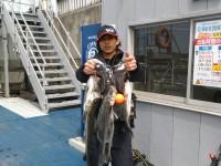 <p>岸和田市の田端様 旧一文字の白灯台で ハネ50センチまで</p> <p>ウキ釣り 餌シラサエビ</p>