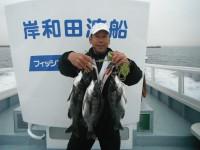 <p>和泉市の松原様、沖の北で、3cm8~44cmのチヌ3匹 落とし込み パイプ</p>