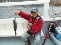 <p>枚方市の岩田様 沖の一文字でハネ45センチ</p> <p>ウキ釣り 餌シラサエビ</p>