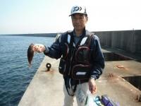 <p>大和郡山市の岡崎様、沖のカーブで、20cm程度のガシラ他</p>