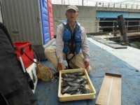 <p>奈良の井澤様、沖の北で、23cm~29cmのグレ 12匹</p> <p>ヌカ切 オキアミ</p>