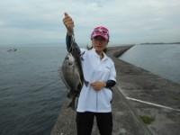 <p>旧一文字では引き続きチヌが好釣です。</p> <p>沖ではグレ・サヨリも引き続き釣れています。</p> <p>桜井市の梶田様、紀州釣りで、キビレを含め10匹の爆釣!!</p> <p>&nbsp;</p>