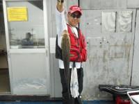 <p>堺市の菅ちゃん、沖の一文字白灯で、ハネ53cm 1匹</p> <p>ウキ釣り 餌シラサエビ</p>