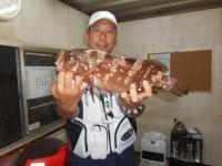 <p>沖の北で本日も出ました!!</p> <p>和泉市の松原様、40cmのアコウ</p> <p>引き続き沖の一文字では根魚が好釣!!</p>