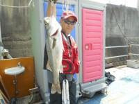 <p>堺市の菅ちゃん、沖の白灯で、ハネ50cm 1匹</p> <p>ウキ釣り 餌シラサエビ</p>