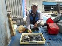 <p>本日は、沖の一文字北で、グレ好釣!!</p> <p>奈良の井澤様、沖の一文字北で、グレ20~25cm 20匹</p> <p>ヌカギリ 餌オキアミ</p>