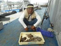 <p>岸和田市の稲村様、中波止で、600gまでのタコ 13匹</p> <p>沖一文字、中波止では引き続きタコが好釣です。</p> <p>良型のアジ・グレも釣れています。</p>