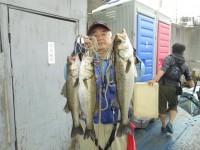 <p>東大阪市の今中様、中波止3番で、ハネ43~53cmまで3匹</p> <p>ウキ釣り 餌シラサエビ</p>