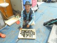 <p>奈良の井澤様、沖の一文字北で、グレ23~29cmまで13匹</p> <p>ヌカギリ 餌イシゴカイ</p>