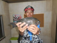 <p>和泉市の川崎様、旧赤灯で、33cmのグレ 700gありました!</p> <p>アオイソメ</p> <p>サビキでは、マメアジ・サバ・イワシ・サッパ等が釣れています。</p>