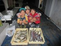 <p>本日も引き続き、サゴシ・タチウオが好釣!!</p> <p>サビキでは、アジ・イワシ・サバ等が好釣です。</p> <p>河内長野市の山田様、沖の北で、タチウオ 13匹 カタクチイワシ</p>