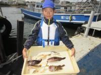 <p>箕面市の石田様、沖の北で、中型アコウ 2匹・22cmのガシラ・等</p> <p>浮き釣り  シラサエビ</p>
