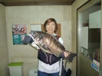<p>本日、50cmオーバーのチヌがあがりました!!</p> <p>和泉市の松原様(奥様)沖の一文字北で、チヌ51.5cm1匹</p> <p>落とし込み 餌イガイ</p>