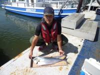 <p>堺市の薦田様、沖の北で、75cmのサワラ・タチウオ</p> <p>アジのませ釣り</p>