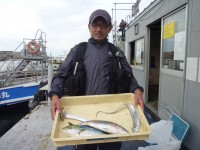 <p>大阪市のケーキ屋さん、沖の一文字北で、ツバス44cmまで2匹・タチウオ指3本サイズまで4匹</p> <p>ツバス(のませ釣り・アジ)タチウオ(ルアー)</p>