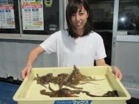 <p>東大阪の竹村様、沖の一文字北で、タコ 500gまで6匹</p> <p>タコジグ</p>