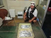 <p>大阪市の桑島様、沖の北で、83cmまでのタチウオ 12匹!!</p> <p>日没前の2時間の釣果です</p> <p>アジ・イワシ・サバ等引き続き好釣!</p>