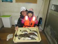 <p>堺市の高野様、中波止2番で42cmまでのチヌ5匹釣られました!!</p> <p>紀州釣りで餌は、オキアミ「Lサイズ」です。</p>