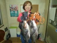 <p>和泉市の松原様、沖の一文字北で落とし込み(餌・イガイ)の釣果</p> <p>チヌ43.5センチまで2匹です。</p> <p>&nbsp;</p>