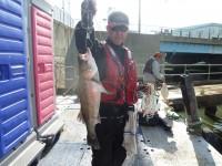 <p>堺市の菅ちゃん、旧の一文字赤灯で、ハネ54cmまで5匹</p> <p>ウキ釣り 餌シラサエビ</p>