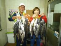 <p>和泉市の松原様、沖の北で、46.5cmまでのチヌ 夫婦で11匹!!</p> <p>落とし込み イガイ</p>