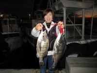 <p>和泉市の松原様、沖の北で49cmまでのチヌ2匹</p> <p>イガイの落とし込みでの釣果です!</p>