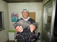 <p>大阪市の雨島様、中波止2番で、チヌ 5匹</p> <p>フカセ釣り オキアミ</p>