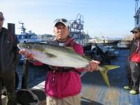 <p>堺市の山根様、沖の北で、65cmのハマチ</p> <p>アジの飲ませ釣り</p>