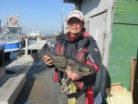 <p>堺市の宝山様 沖の北で</p> <p>スズキ70センチ</p> <p>アジの飲ませ釣り</p>