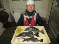 <p>和泉市の松原様、中波止3番で、チヌ43cm 3匹</p> <p>フカセ釣り 餌オキアミ</p>