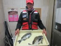 <p>橿原市の篠原様、中波止2番で、チヌ42cmまで2匹</p> <p>紀州釣り 餌オキアミ</p>