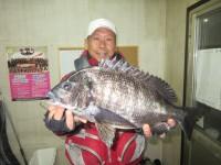 <p>和泉市の松原様、中波止で、46cmのチヌ</p> <p>フカセ釣り 餌オキアミ</p>