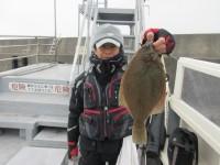 <p>泉大津市の鳩山様、沖のカーブで、38cmのカレイ</p> <p>手の平サイズとあわせて計2匹</p> <p>投げ釣り 餌青イソメ</p>