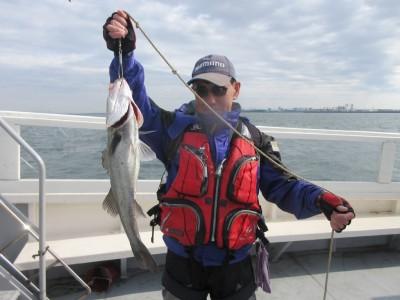 <p>枚方市の岩田様、沖の一文字北で60cmのスズキです!!</p> <p>ウキ釣り・餌、シラサエビ</p>