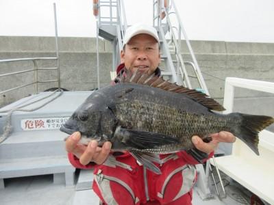 <p>和泉市の松原様、沖の一文字白灯で、チヌ48cm 1匹</p> <p>落とし込み 餌パイプ</p>