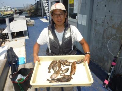 <p>岸和田市の陰山様、沖一文字北で</p> <p>24cmまでのアコウ・ガシラ・メバル等15匹</p> <p>釣り方・エビ撒き釣り</p>