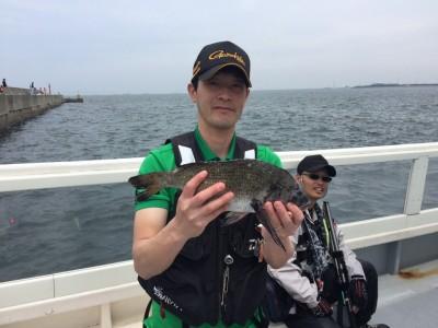 <p>堺市の西岡様、沖一文字北で</p> <p>40cmチヌです!!</p> <p>オキアミのフカセ釣り</p>