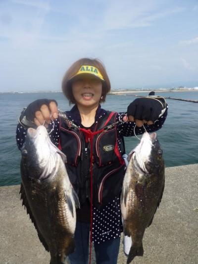 <p>和泉市の松原奥様、沖の一文字北で、チヌ 47cmまで2匹</p> <p>落とし込み 餌イガイ  途中経過です!!</p>