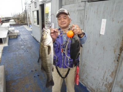 <p>東大阪市の今中様、沖一文字北で</p> <p>64㎝までのハネ・34㎝までのグレ</p> <p>釣り方・エビ撒き釣り</p>