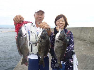 <p>和泉市の松原夫婦、沖の一文字北で、チヌ43㎝まで3匹</p> <p>落とし込み 餌イガイ</p> <p>途中経過です!!</p>