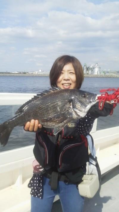 <p>和泉市の松原様、旧の一文字赤灯で、チヌ 46cm 1匹</p> <p>落とし込み 餌イガイ</p>