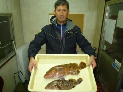 <p>岸和田市の達郎くん、旧の一文字赤灯で、アコウ 47cmまで2匹</p> <p>ウキ釣り 餌シラサエビ</p>