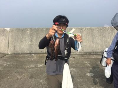 <p>泉大津市の鳩山様、沖一文字南で</p> <p>27㎝までのアコウ2匹</p> <p>釣り方・ウキ釣り(シラサエビ)</p>