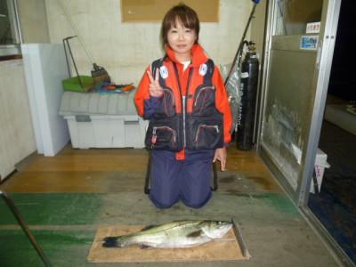 <p>東大阪市の日下様、沖の一文字北で、スズキ 62㎝ 1匹</p> <p>のませ釣り 餌アジ</p>