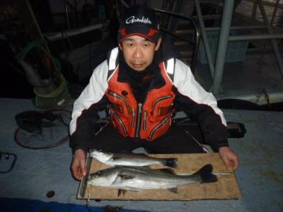 <p>堺市の善ちゃん、中波止2番で、ハネ59㎝まで2匹</p> <p>ウキ釣り 餌シラサエビ</p>