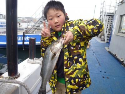 <p>大阪市の小田嶋様、旧の一文字赤灯で、ハネ 46cm 1匹</p> <p>ウキ釣り 餌シラサエビ</p>