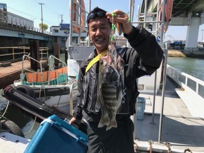 <p>大阪市の塩見様、沖一文字南で</p> <p>36㎝チヌ・45㎝までハネ2匹・23㎝メバル</p> <p>エビ撒き釣り</p>