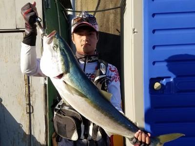 <p>岸和田市の西山様、沖の一文字北で、ブリ 93cm 1匹</p> <p>のませ釣り 餌アジ</p>